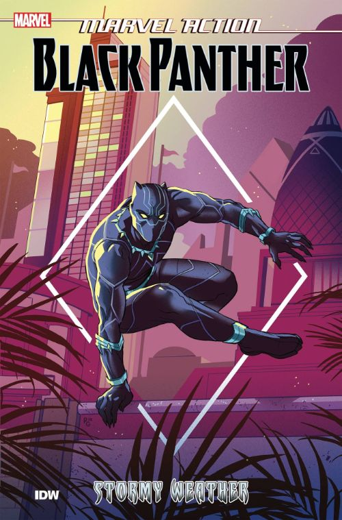 MARVEL ACTION: BLACK PANTHERBOOK 01: STORMY WEATHER