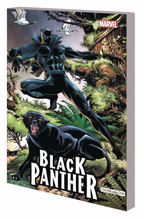 BLACK PANTHER: PANTHERS QUEST